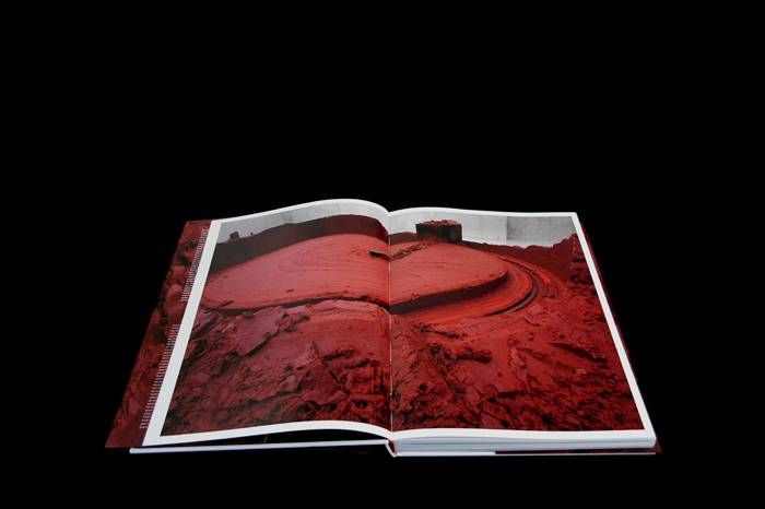 Kunstbuch Anish Kapoor – my red homeland